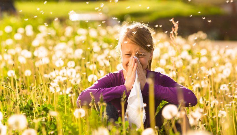 Nuovi rimedi naturali per liberarsi dalle allergie e dalle sue cause