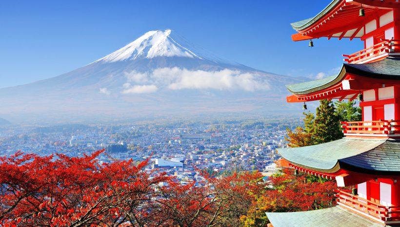 L'approvazione ufficiale dei Funghi curativi in Giappone Cina ed USA