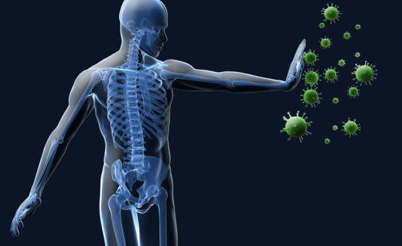 L'Immunità in pillole dove è collocata