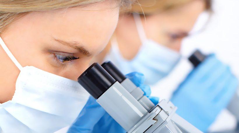 I Funghi Medicinali: come se ne è accorta la Scienza