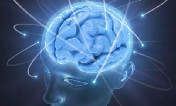 Ictus cerebrale la scienza promuove il Cordyceps