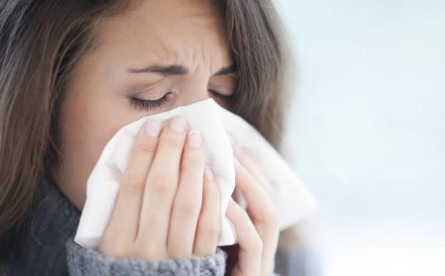 Il Cordyceps: eccellente prevenzione e cura dell'influenza