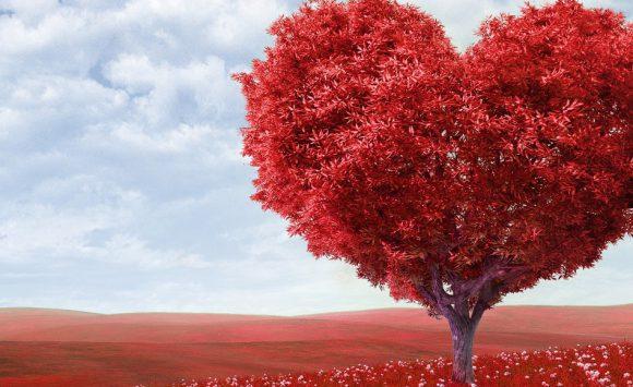 Il Cordyceps rinvigorisce e aiuta il cuore sano o malato