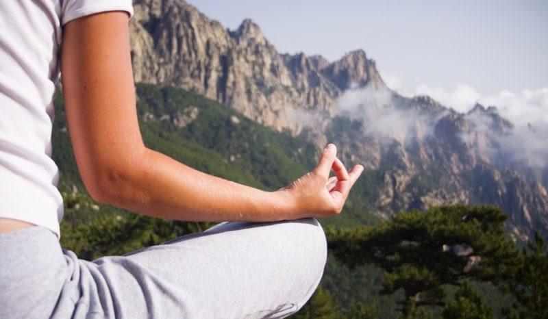 Cordyceps: energia e serenità