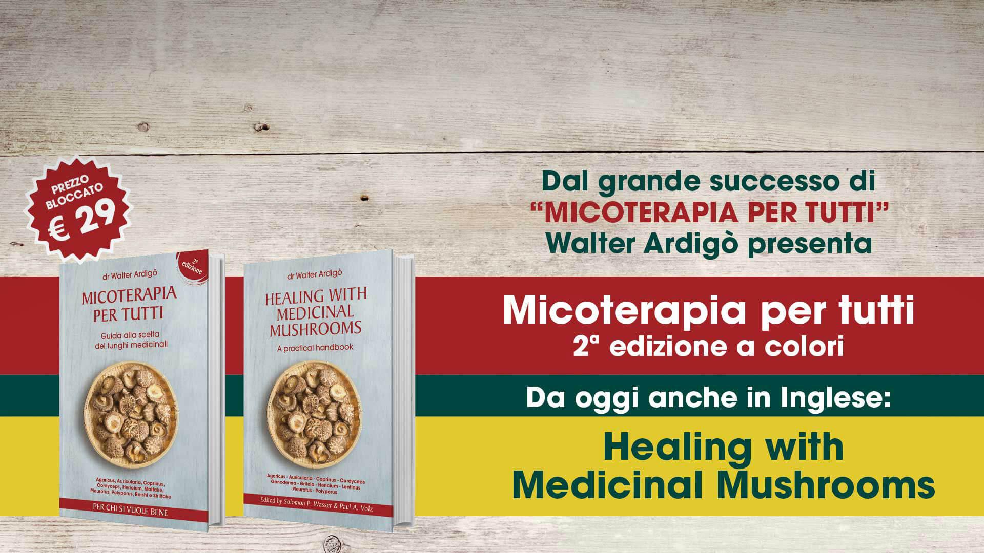 libri-ita-ing-blog-giallo-(2)