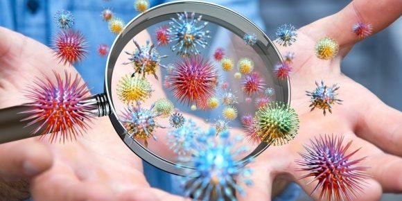 Funghi medicinali protettivi contro virus e batteri